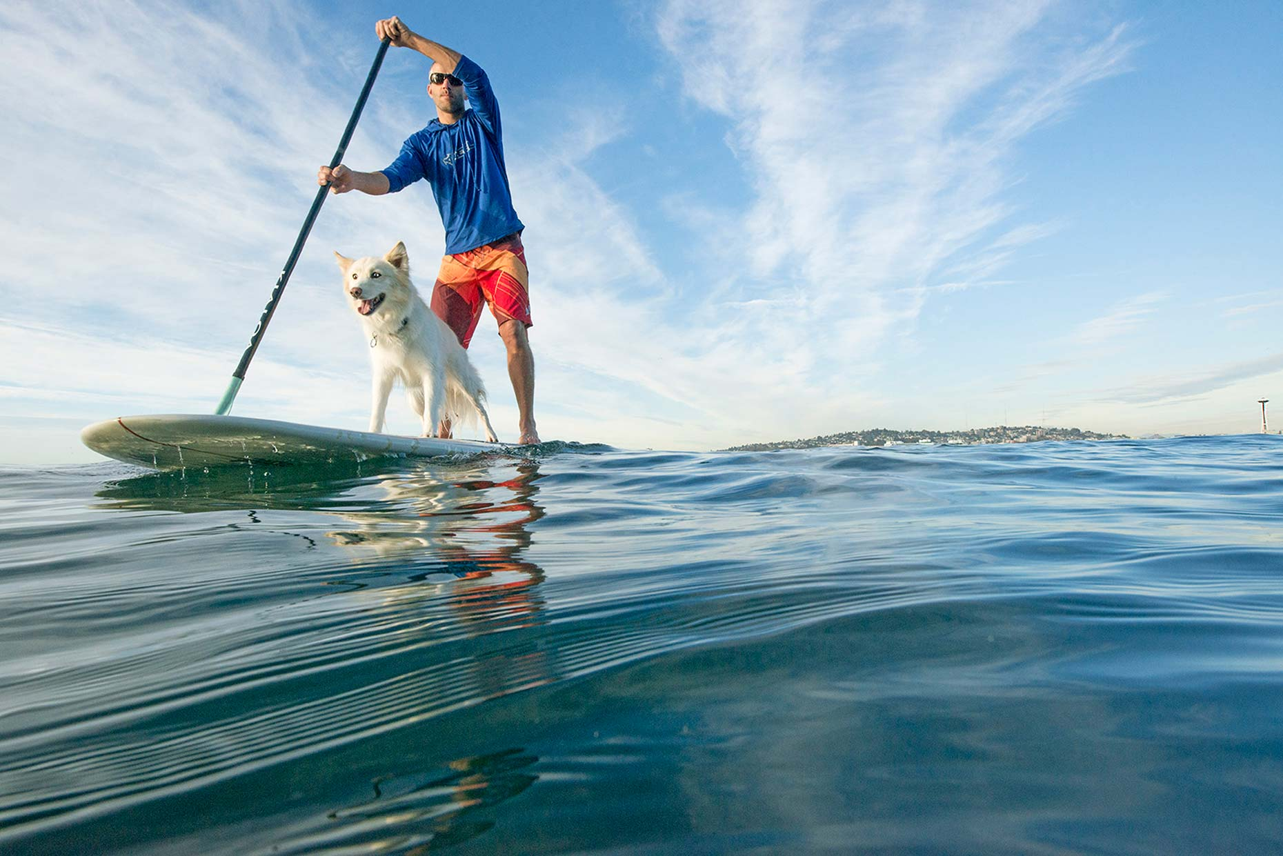 Ian-Coble-SUP-Paddling-Ocean-Beach-Dog